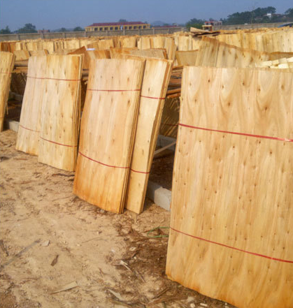 Vietnam's eucalyptus veneer exports to China increased significantly in the first half of 2021